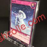 RD/KP02-JP050 猛吹雪