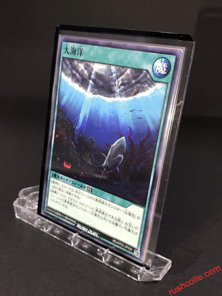 RD/KP03-JP050 大海洋