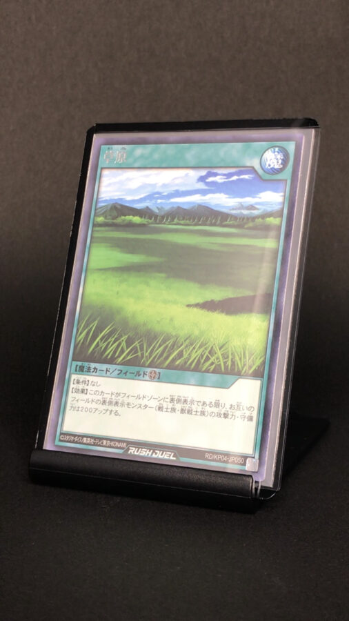 RD/KP04-JP050 草原