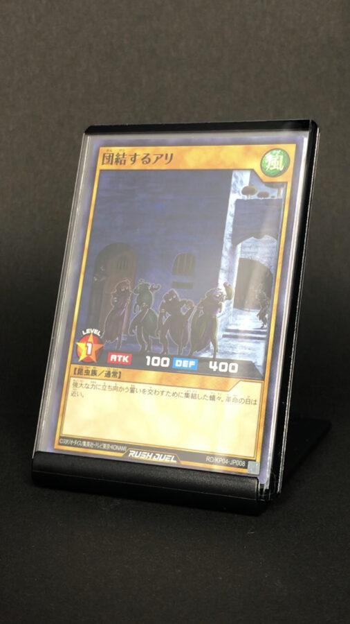RD/KP04-JP008 団結するアリ
