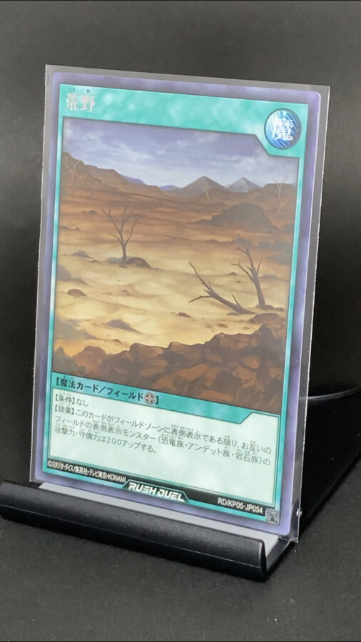 RD/KP05-JP054 荒野 (レア)