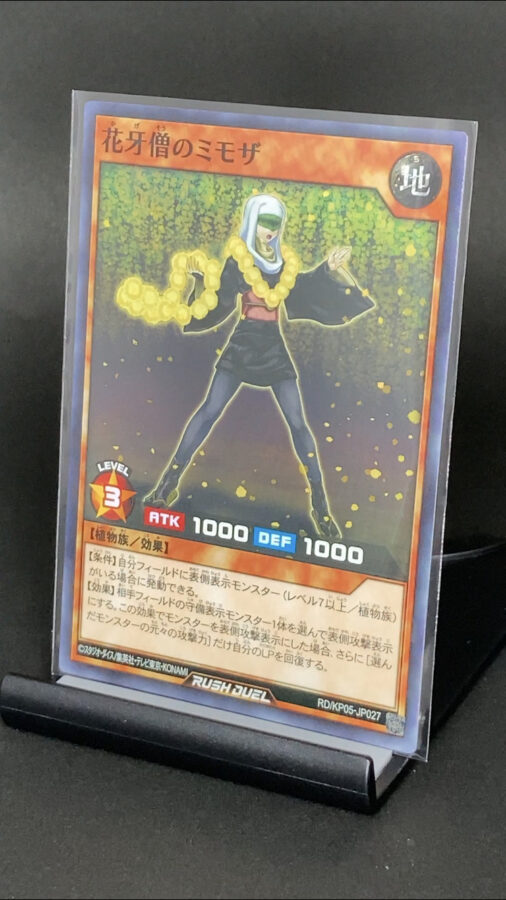 RD/KP05-JP027 花牙僧のミモザ